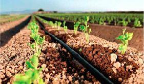 Орошение полей для нужд сельского хозяйства